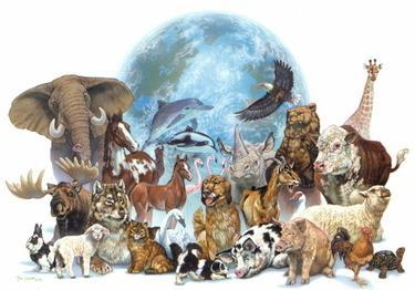 animals of earth