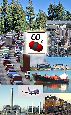 Main sources and sinks of CO2
