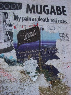 Street Art Commenting on Mugabe\'s Brutal Reign